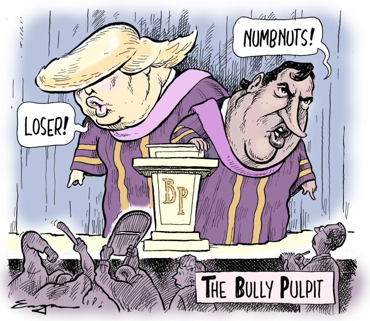 Billedresultat for bully pulpit