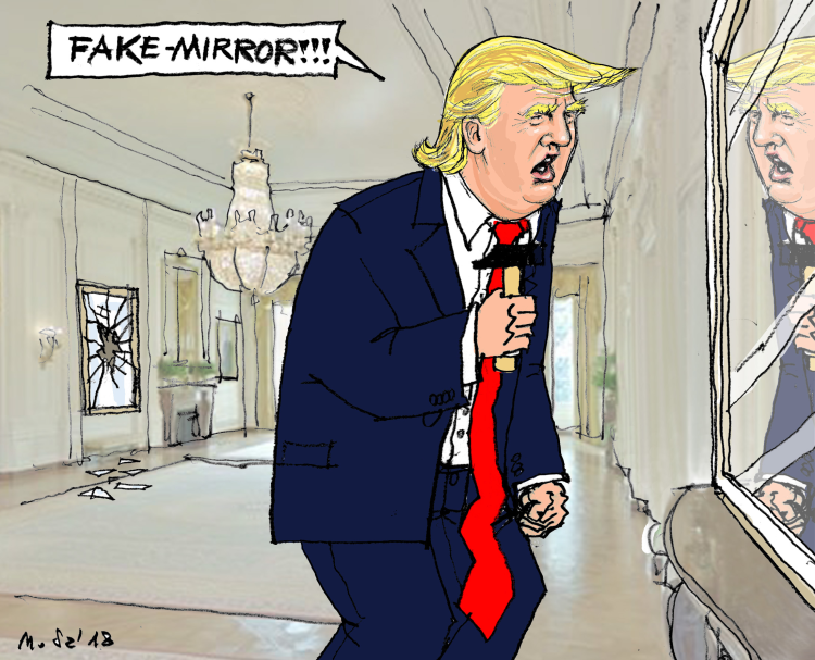Image result for trump in mirror