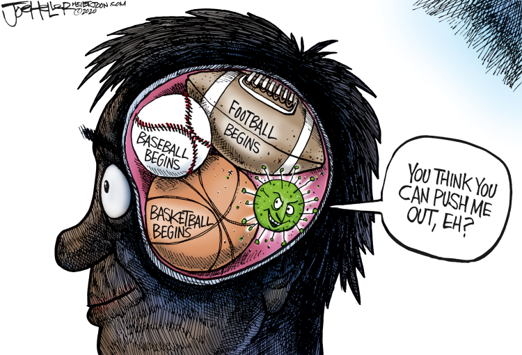 Think Toon by Joe Heller