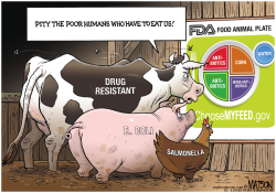 FDA Choose My Feed Food Plate For Food Animals- by RJ Matson