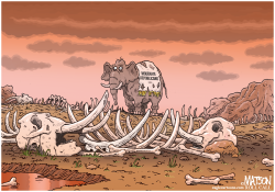 Moderate Republican Graveyard- by RJ Matson