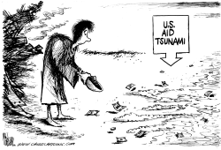 US Aid Tsunami by Mike Lane