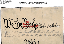 Egypts New Constitution by Jeff Darcy