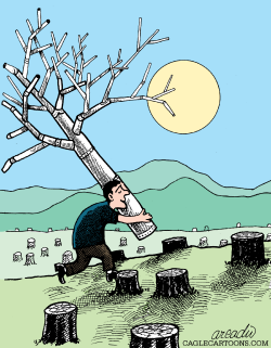 A fake tree  by Arcadio Esquivel