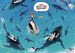 Shark Week  by Nate Beeler