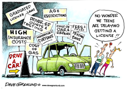 Teens delay driving by Dave Granlund