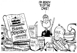 Bush Democracy Cake by Mike Lane