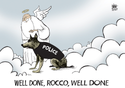 LOCAL, POLICE DOG KILLED IN PITTSBURGH,  by Randy Bish