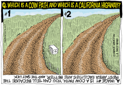 LOCAL-CA Bad Roads in California by Wolverton