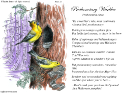 Field Guide for the Birds - Plate 22 -  by Taylor Jones