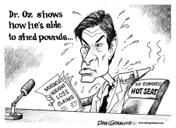 Dr Oz and weight loss by Dave Granlund