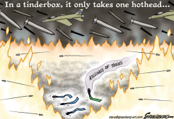 Tinderbox by Steve Greenberg