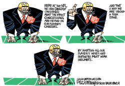 NFL  by David Fitzsimmons