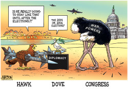 Hawk And Dove And Congress- by RJ Matson