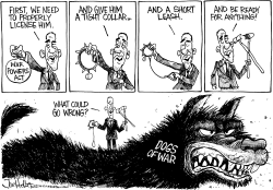 War Powers by Joe Heller