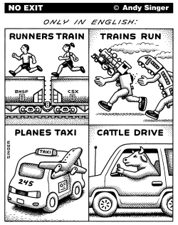 Strange English Language Expressions by Andy Singer