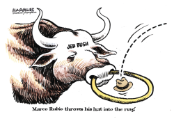 Marco Rubio color by Jimmy Margulies