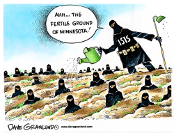 Minnesota grown ISIS by Dave Granlund