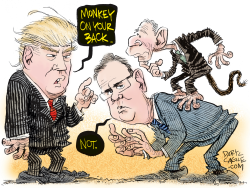 Trump, Jeb Bush and George W  by Daryl Cagle