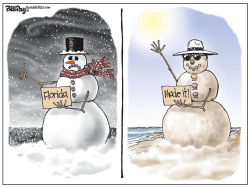 local FL  SNOWMAN  color by Bill Day