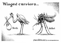 Zika virus by Dave Granlund