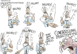 Iowa Coin Toss  by Pat Bagley