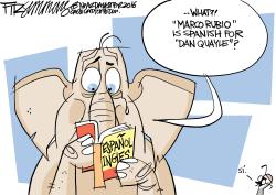Rubio by David Fitzsimmons
