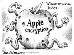 Apple encryption and terrorism by Dave Granlund