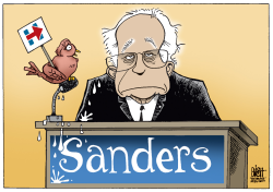 BERNIE'S BIRD,  by Randy Bish