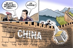 China's  political reforms  by Paresh Nath