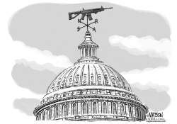 NRA Political Weathervane on Capitol Hill by RJ Matson