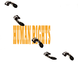 Human Rights by Pavel Constantin