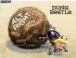 Alt Right All Wrong  by Steve Sack