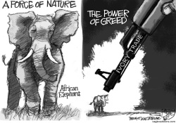 Ivory Trade by Pat Bagley
