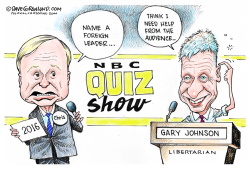 Gary Johnson Quiz  by Dave Granlund