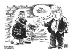 White Working Class and Trump by Jimmy Margulies