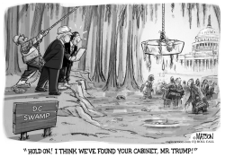 Trump Drains The Swamp Looking for People to Appoint to his Cabinet by RJ Matson