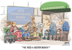 Tired Old Democrats In Congress Need A Deeper Bench- by RJ Matson