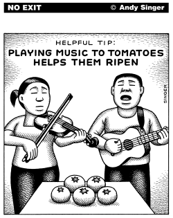 Playing Music to Tomatoes by Andy Singer