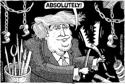 Trump and Torture by Wolverton