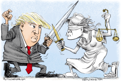 Trump vs the Courts by Daryl Cagle