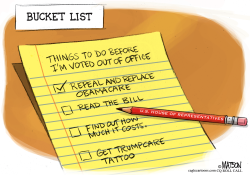 AHCA Bucket List- by RJ Matson