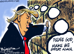 Trump Wall by Milt Priggee