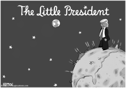 The Little President by RJ Matson