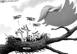 Tweety Birds by Nate Beeler