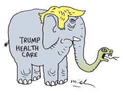 Trump Health Care by Deng Coy Miel