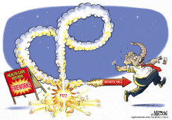 Senate Health Care Reform Fireworks Misfire by RJ Matson