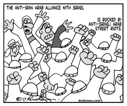 Anti-Israe Riots by Yaakov Kirschen