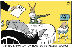 HOW GOVERNMENT WORKS,  by Randy Bish
