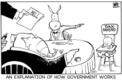 HOW GOVERNMENT WORKS, B/W by Randy Bish